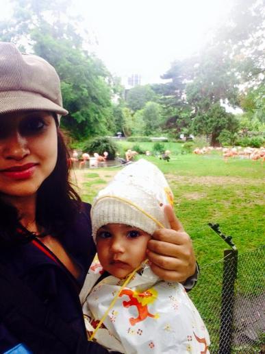 mom-and-baby-at-kolner-zoo-cologne